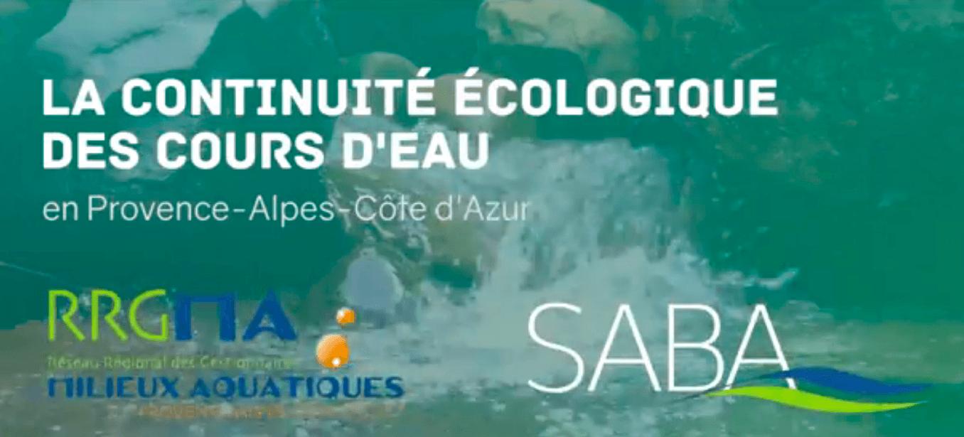 VIDEO : LA CONTINUITÉ ÉCOLOGIQUE DES COURS D'EAU EN PACA – RESTITUTION DE LA JOURNÉE DU 26 JUIN 2017 ORGANISÉE PAR LE RRGMA