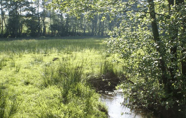 Territoire du bassin versant du Couesnon Aval